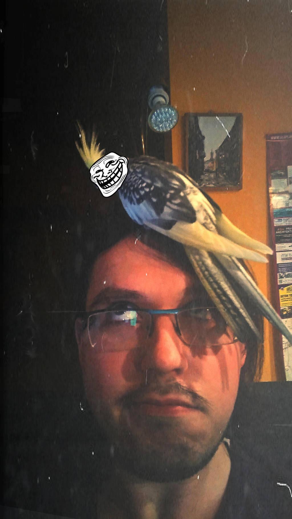 LordMiras's Profile Picture