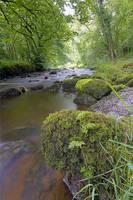 River Wye in Chee Dale by pjones747