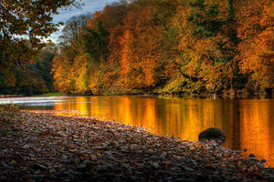 Autumn Glory by pjones747