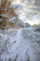 In the Deep Mid Winter by pjones747
