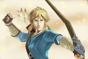 Link Zelda wii U by ZaloHero
