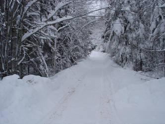 Snow Day by Wishnick