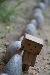 Weary Danbo by Clair3Su3
