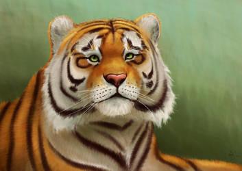 Siberian Tiger by Schoyhan