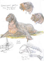 Walrus-asaurus by Lord-Triceratops