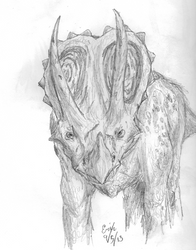 Triceratops staredown by Lord-Triceratops