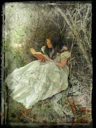 Fairytale by Designdivala