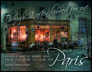 No Cure for Paris by Designdivala