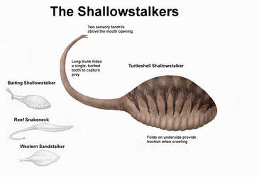 REP: The Shallowstalkers by Ramul