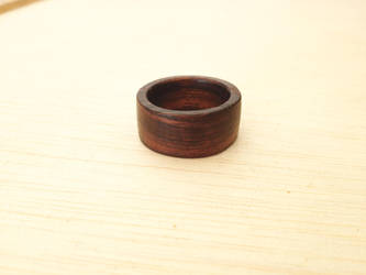 9.5 Ironwood Ring by Vikingjack