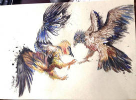 Bearded Vultures by kyrisnowpaw