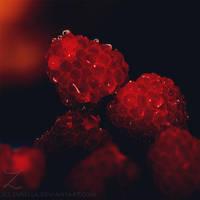 Precious Berries by zvaella
