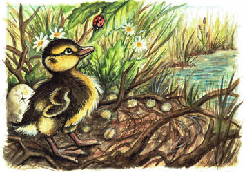 Duckling by kiriOkami