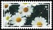 flower stamp . by memesking