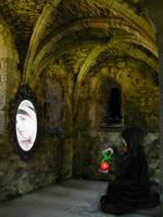 Mirror Mirror by hedgepiratefury