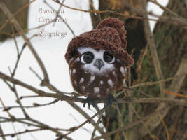 Owl named Kiwi OOAK (Sold) by Lyntoys