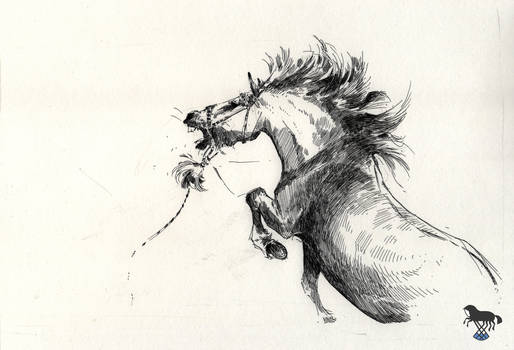 Sketch of angry horse by OblokMagellana