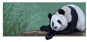 Giant Panda: Tian Tian by JaniceDuke