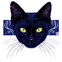 Blue Cat by JaniceDuke