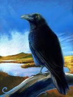 Raven by JaniceDuke