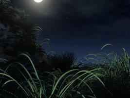 A Random night by jaryth000