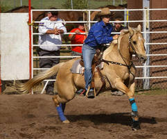 Palomino Barrel Racer by deefilly