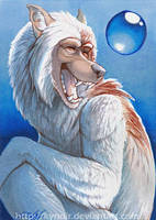 ACEO- WolfPearl by Kyndir