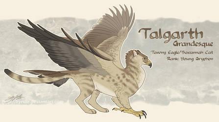 Talgarth Reference Sheet by Kyndir