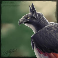 Red Izak by Kyndir