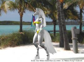 Beth TWG Island Beach by S-White-Pony-Kidwell