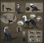 Plague Cur Species Sheet by UnfortunateCorvid
