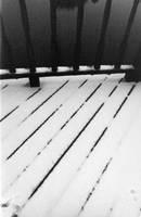 Snowy Houston 3 by amagawa