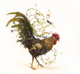 of the majestic and mundane - rooster by creaturesfromel