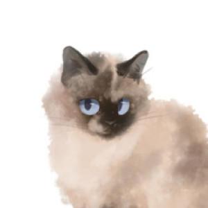 MaunuChan's Profile Picture