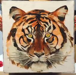 Birthday Tiger by PinsXNeedles