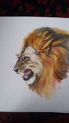 Roar by PinsXNeedles