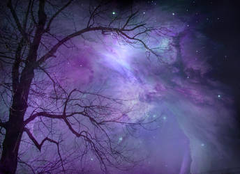 Tree and Nebula STOCK by wyldraven