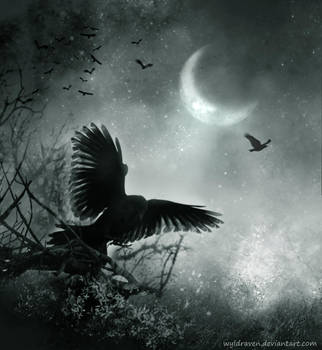 Flying Away II by wyldraven