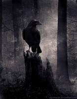 Dark Soul by wyldraven