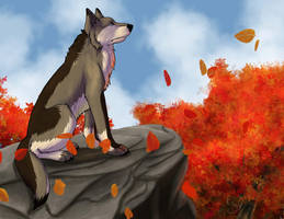 A Day in Autumn by SophiePf