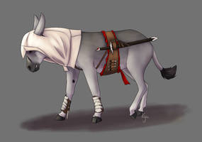 Elsa, the donkey you shouldn't provoke by SophiePf