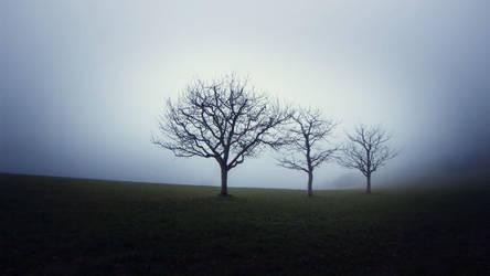 Trio by Cormocodran15