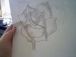 rose by IronWolfX3