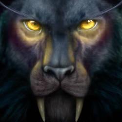 Eyes of Elune by jocarra