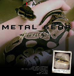 Metal Gear - Actual Snake by jocarra