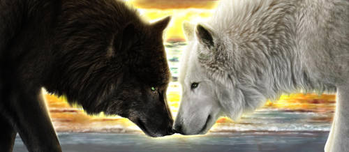 Commission - Pacific Wolves by jocarra