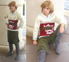 Skyloft Link at MegaCon by NiGHTmaren-Cosplay