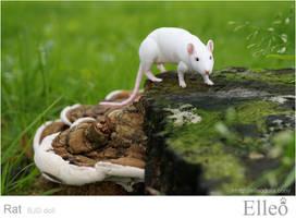 Rat bjd doll 01 by leo3dmodels