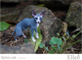 Sphinx doll cat 06 by leo3dmodels