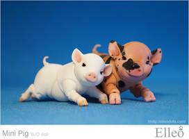 Mini Pig doll bjd 06 by leo3dmodels